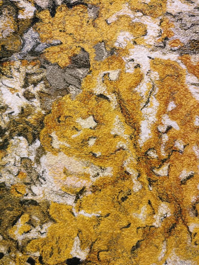 11d Malin Lager, lichen